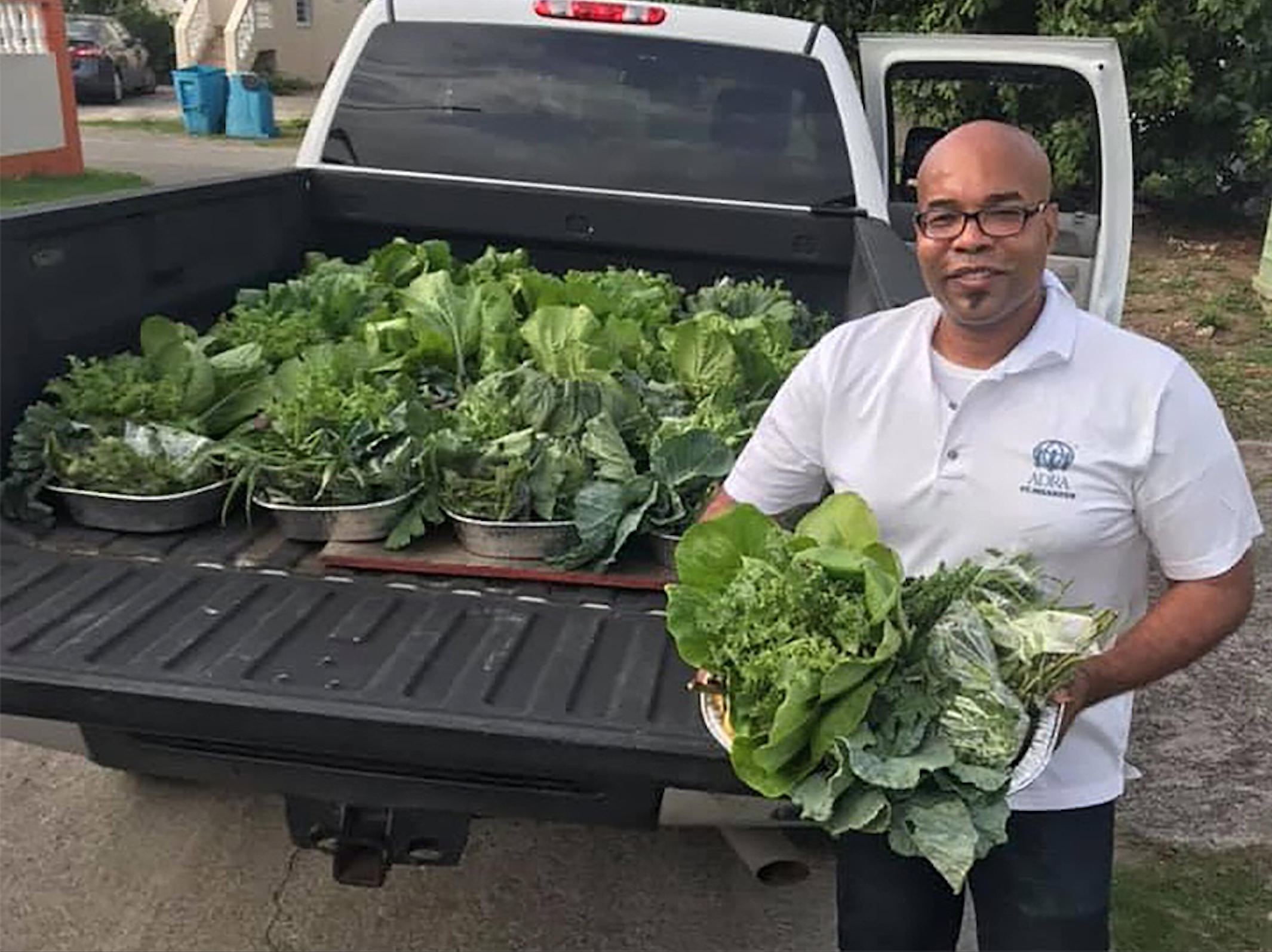 In Sint Maarten, ADRA Distributes Organically Grown Produce and Launches Kitchen Gardens